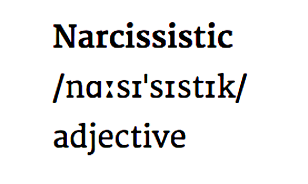 Definition Narcissistic